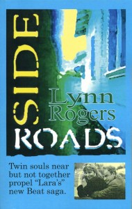 Side Roads - by Lynn Rogers